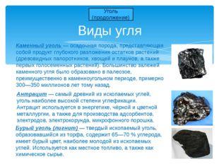 Виды угля Уголь (продолжение) Антрацит — самый древний из ископаемых углей, у