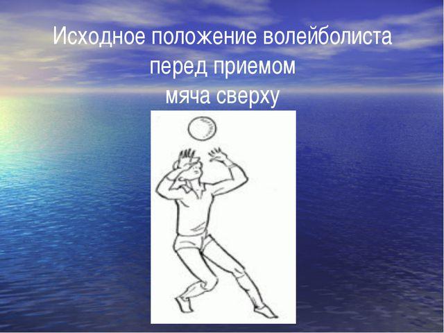Исходное положение волейболиста перед приемом мяча сверху