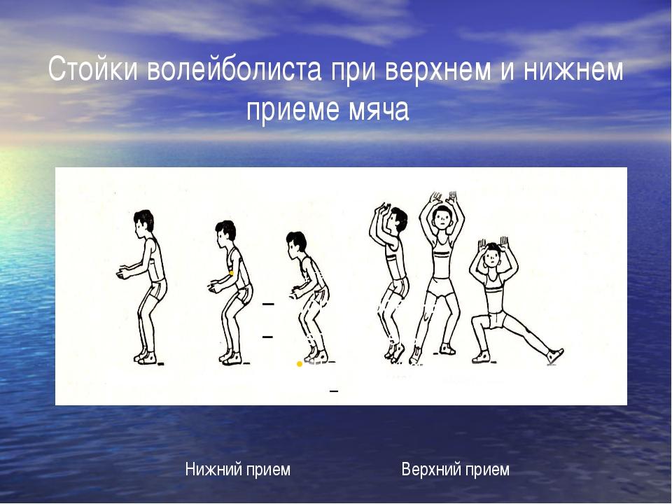 Стойки волейболиста при верхнем и нижнем приеме мяча Нижний прием Верхний прием