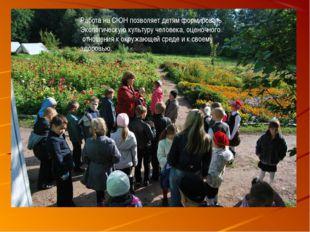 Работа на СЮН позволяет детям формировать Экологическую культуру человека, оц