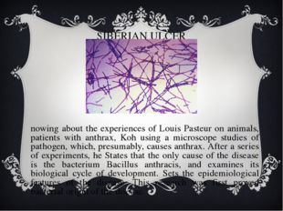 SIBERIAN ULCER Knowing about the experiences of Louis Pasteur on animals, pat