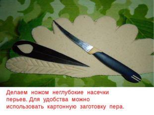 Делаем ножом неглубокие насечки перьев. Для удобства можно использовать карто