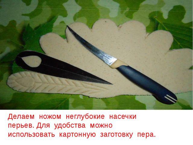 Делаем ножом неглубокие насечки перьев. Для удобства можно использовать карто...