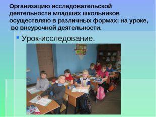 Организацию исследовательской деятельности младших школьников осуществляю в р