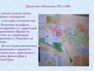 Династия Аббасидов (751-1258) сумела создать самое крупное государство в исто