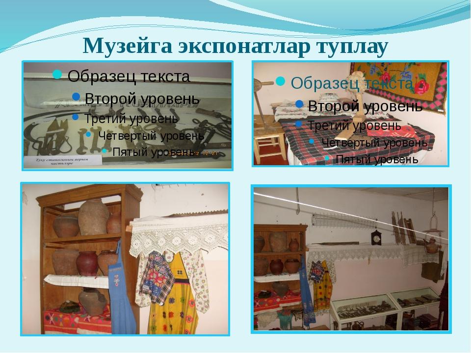 Музейга экспонатлар туплау