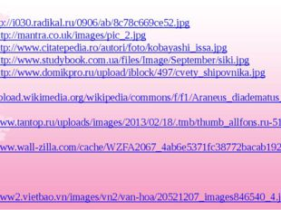 9. http://i030.radikal.ru/0906/ab/8c78c669ce52.jpg 10. http://mantra.co.uk/im