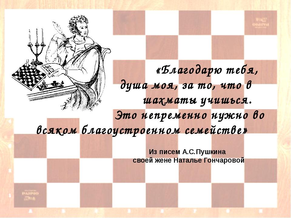 «Благодарю тебя, душа моя, за то, что в шахматы учишься. Это непременно нужн...
