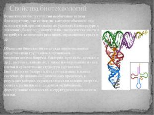 Свойства биотехнологий Возможности биотехнологии необычайно велики благодаря
