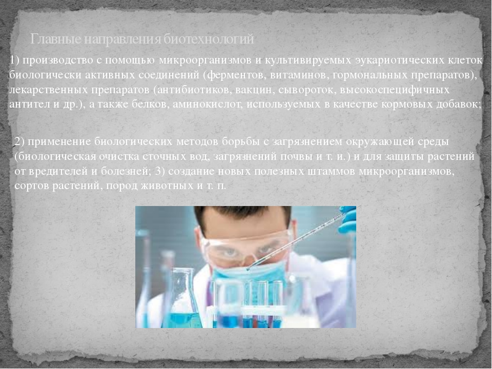 Главные направления биотехнологий 1) производство с помощью микроорганизмов и...