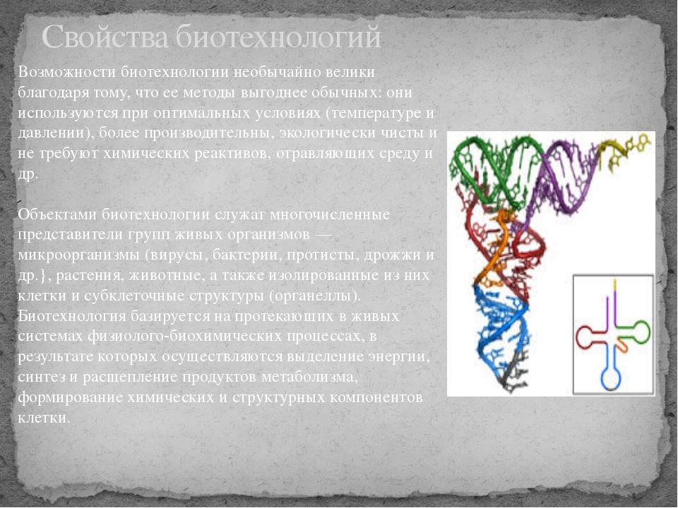 Свойства биотехнологий Возможности биотехнологии необычайно велики благодаря...