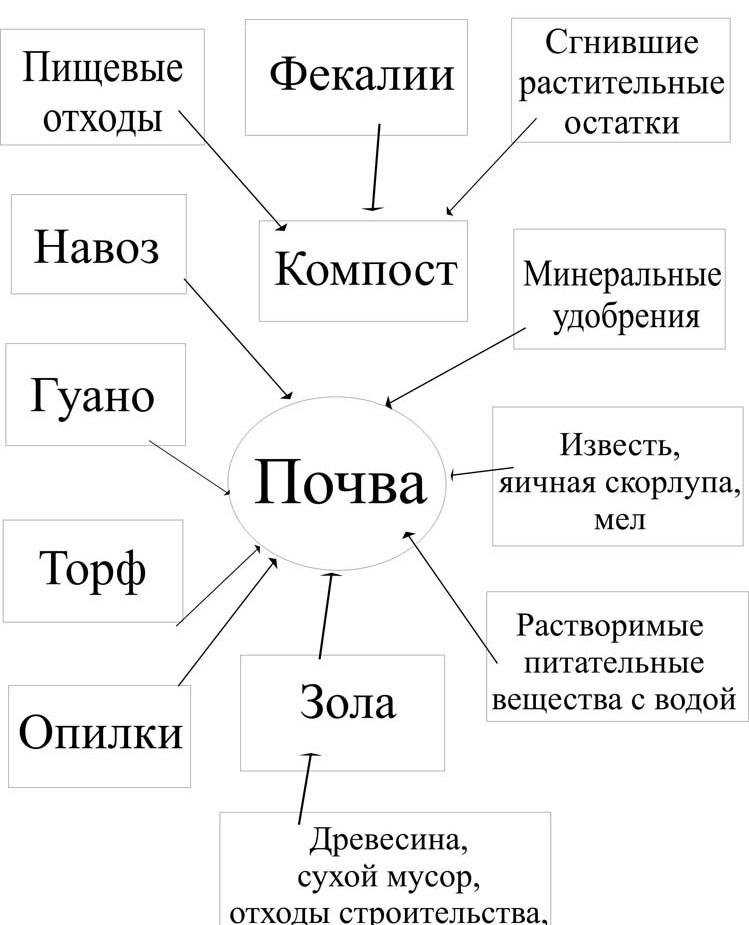 D:\Users\биология\AppData\Local\Microsoft\Windows\Temporary Internet Files\Content.Word\Схема почва.jpg