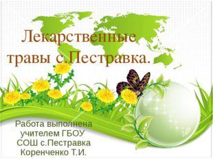Лекарственные травы с.Пестравка. Работа выполнена учителем ГБОУ СОШ с.Пестрав