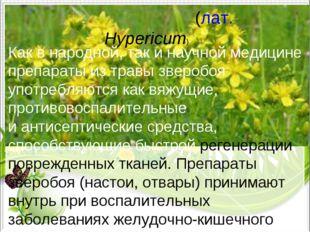 Зверобо́й(лат.Hypericum) Как внародной, так инаучной медицине препараты и