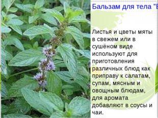 """Бальзам для тела """"Био Перечная мята"""" Листья и цветы мяты в свежем или в сушён"""