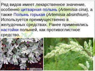 Ряд видов имеет лекарственное значение, особенноцитварная полынь(Artemisia