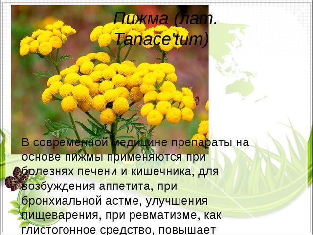 Пижма (лат. Tanace'tum) В современной медицине препараты на основе пижмы прим...