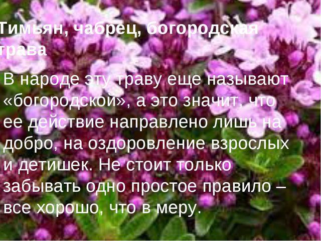 Тимьян, чабрец, богородская трава В народе эту траву еще называют «богородско...