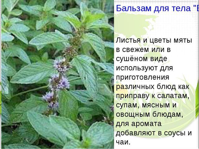 """Бальзам для тела """"Био Перечная мята"""" Листья и цветы мяты в свежем или в сушён..."""