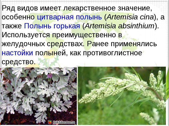 Ряд видов имеет лекарственное значение, особенноцитварная полынь(Artemisia...