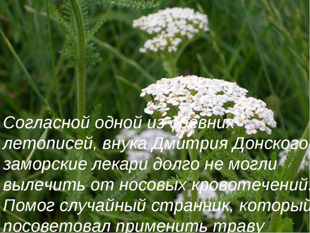 Согласной одной из древних летописей, внука Дмитрия Донского заморские лекари...
