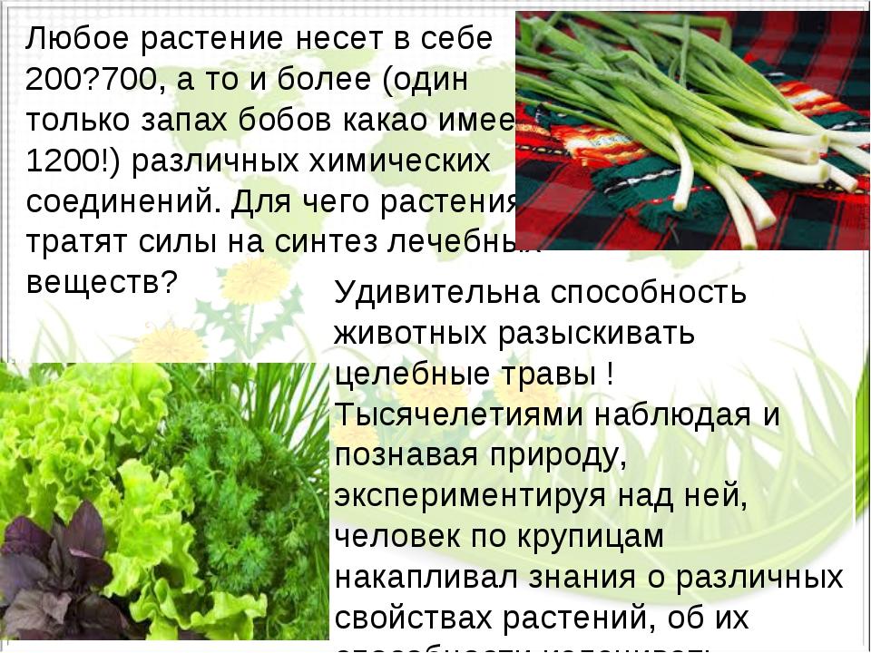 Любое растение несет в себе 200?700, а то и более (один только запах бобов ка...