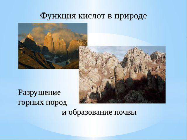 Разрушение горных пород и образование почвы Функция кислот в природе