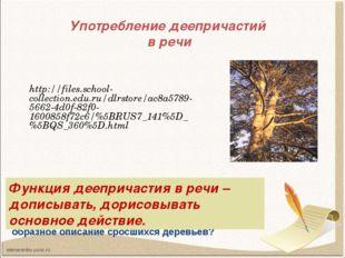 Употребление деепричастий в речи http://files.school-collection.edu.ru/dlrsto