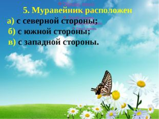 5. Муравейник расположен а) с северной стороны; б) с южной стороны; в) с