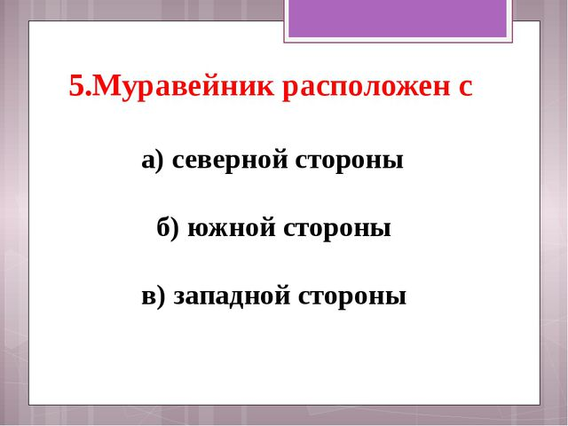 5.Муравейник расположен с а) северной стороны б) южной стороны в) западной...