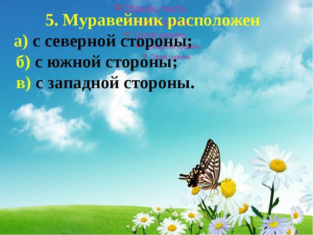 5. Муравейник расположен а) с северной стороны; б) с южной стороны; в) с...