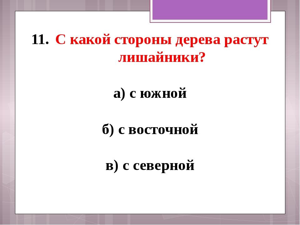 С какой стороны дерева растут лишайники? а) с южной б) с восточной в) с север...