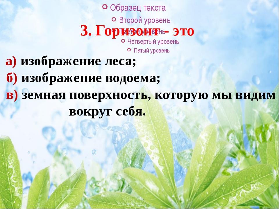 3. Горизонт - это а) изображение леса; б) изображение водоема; в) земная п...