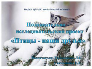 МАДОУ ЦРР-ДС №44 «Золотой ключик»