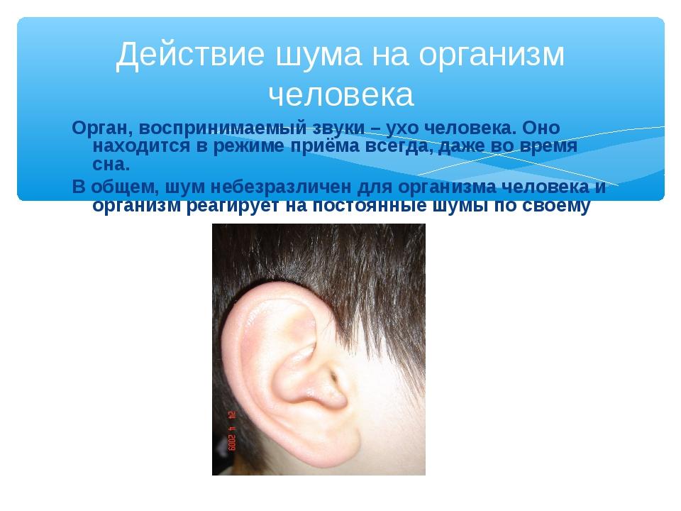 Орган, воспринимаемый звуки – ухо человека. Оно находится в режиме приёма все...