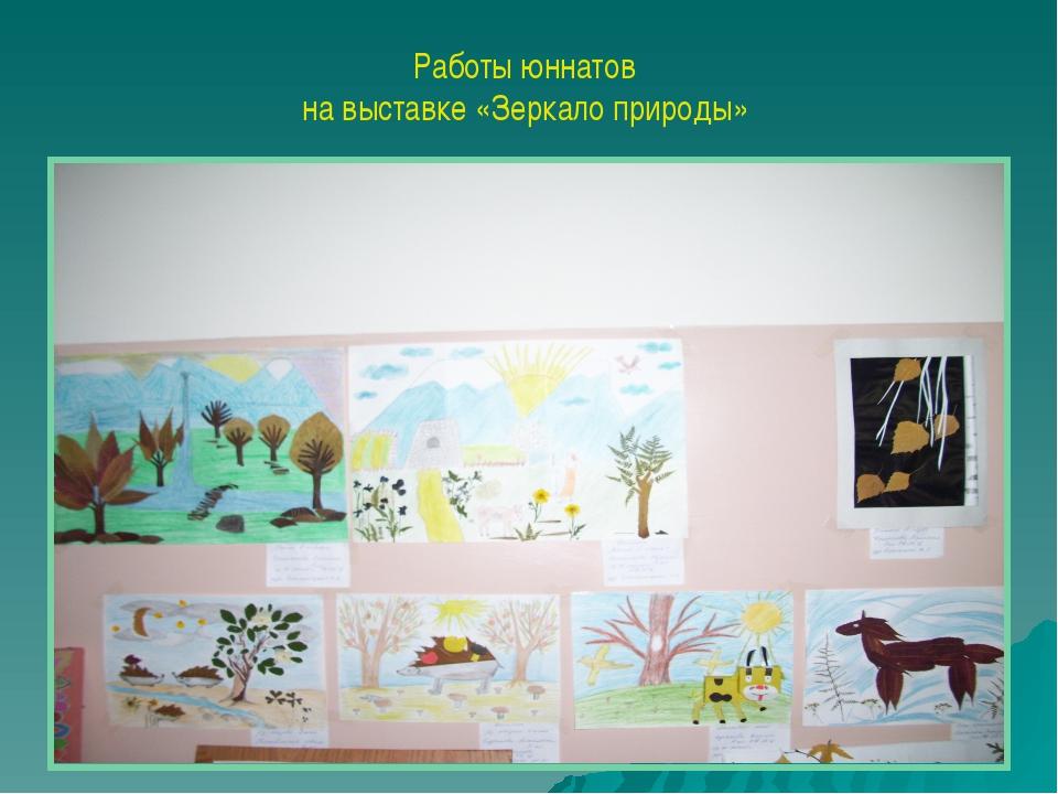 Работы юннатов на выставке «Зеркало природы»