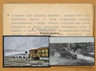 Холодное утро двадцать восьмого декабря 1943 года. Бембеевых вместе со всем