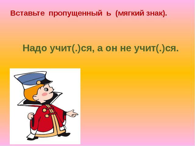 Вставьте пропущенный ь (мягкий знак). Надо учит(.)ся, а он не учит(.)ся.