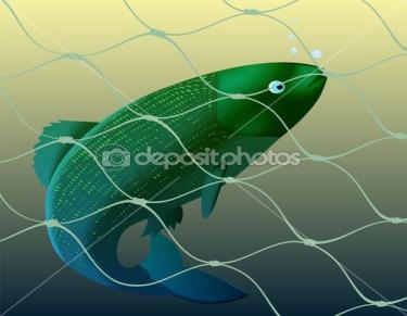 C:\Users\Администратор\Desktop\depositphotos_4781041-Fish-and-grid.jpg