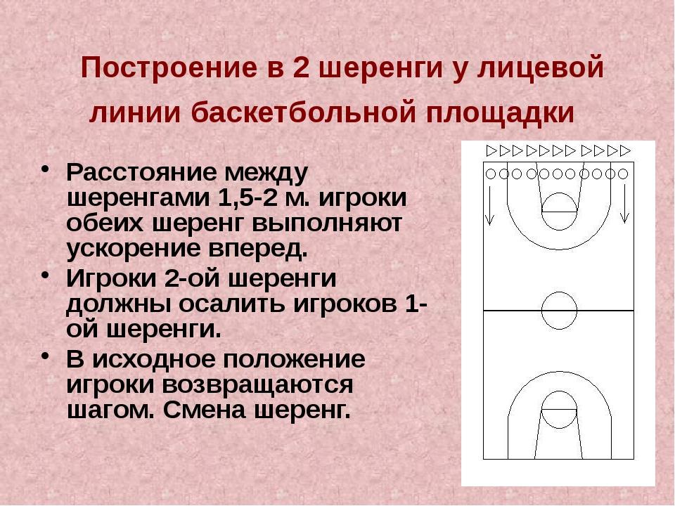 Построение в 2 шеренги у лицевой линии баскетбольной площадки Расстояние меж...