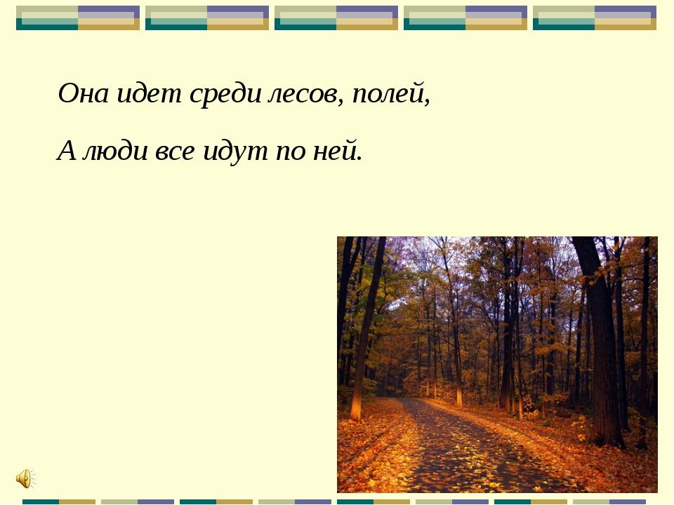 Она идет среди лесов, полей, А люди все идут по ней.