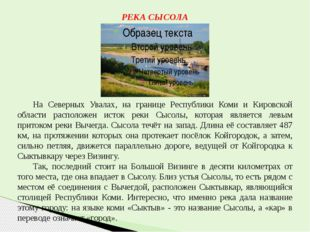 РЕКА СЫСОЛА На Северных Увалах, на границе Республики Коми и Кировской облас