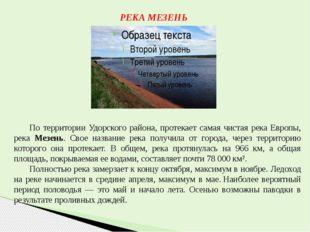 РЕКА МЕЗЕНЬ По территории Удорского района, протекает самая чистая река Европ
