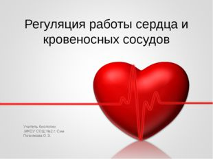 Регуляция работы сердца и кровеносных сосудов Учитель биологии МКОУ СОШ №2 г.