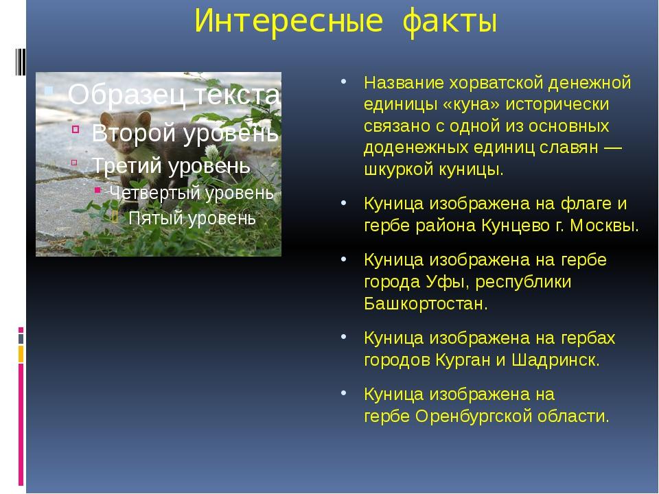Интересные факты Названиехорватской денежной единицы «куна» исторически связ...