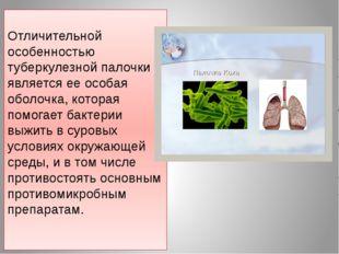 Отличительной особенностью туберкулезной палочки является ее особая оболочка,