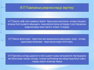 И.П Павловтың рефлекстерді зерттеуі И.П Павловт әрбір жеке адамның тіршілігі