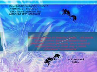 ИССЛЕДОВАТЕЛЬСКАЯ РАБОТА УЧЕНИКА 3 – Б КЛАССА УВК «Школа-гимназия» №1 МАСАЛ