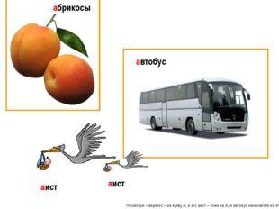 Посмотри – абрикос – на букву А, а это аист – тоже на А, и автобус начинается