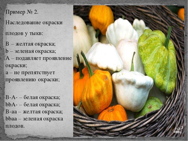 Пример № 2. Наследование окраски плодов у тыкв: В – желтая окраска; b – зелен...